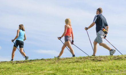 Quels bâtons de marche utiliser en fonction de sa pratique ?