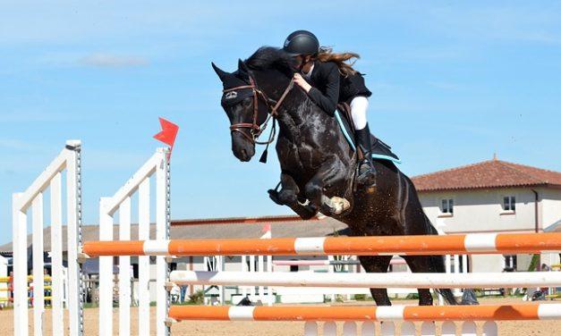 Progresser en équitation et atteindre ses objectifs est le rêve de tous les cavaliers